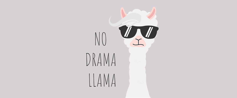 No Drama Llama Meme
